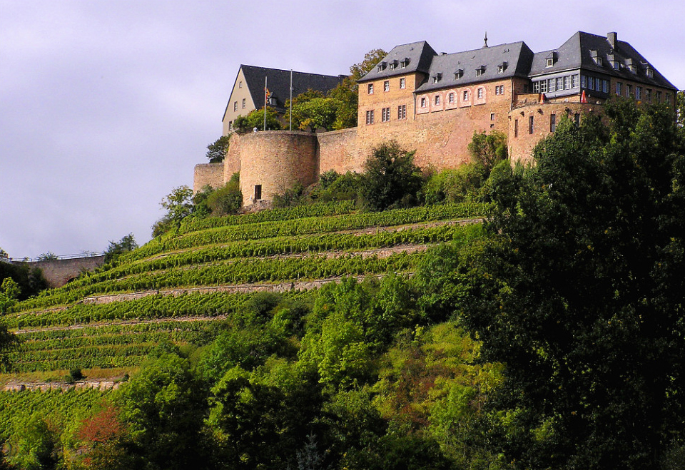 The Ebernburg is a castle situated on top of a hill with